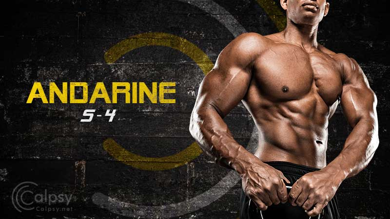 Andarine (S4) - Does this SARM really work? w/Before & After